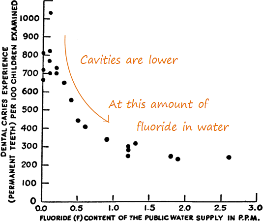 A graph from 1930s and 1940s research on cavities decreasing with fluoride levels is a key reason for why is there fluoride in our water.