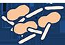 Streptococcus mutans and lactobacilli bacteria icon