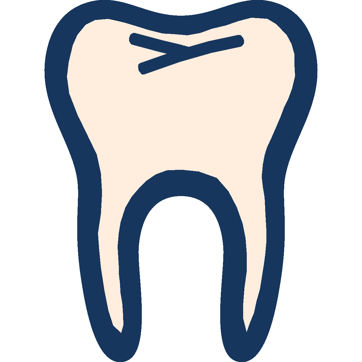 Icon of a tooth with grooves and pits in the molar